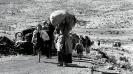 NAKBA – 71 anos de opressão israelita sobre o povo palestino_1