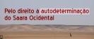 Solidariedade com o povo saarauí_1